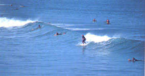Surfing Warrnambool